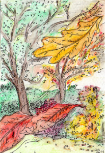 More leaves falling in the garden