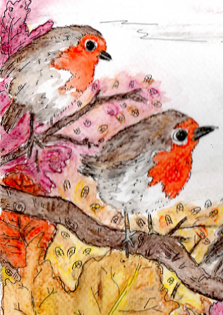 Robins Close up