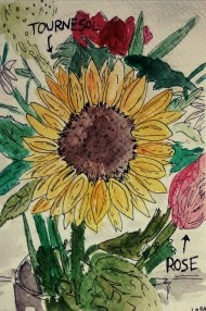 212- Flowers en francais