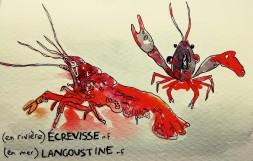 214- Crayfish