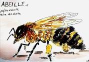 224-Bee