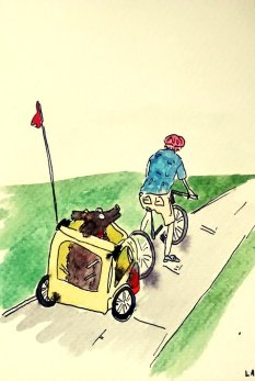 246- Hector on a bike ride