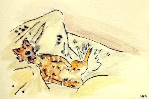 263- Tigerlilly chilling