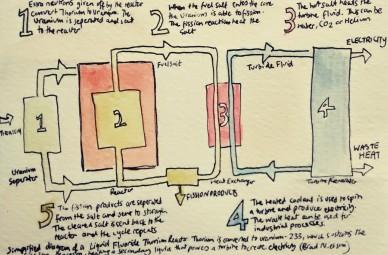 268- Simplified diagram of a Liquid Thorium Reactor