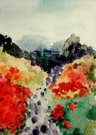 304- The walk to Grange in the Lake District