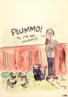 362- Plummo the cat