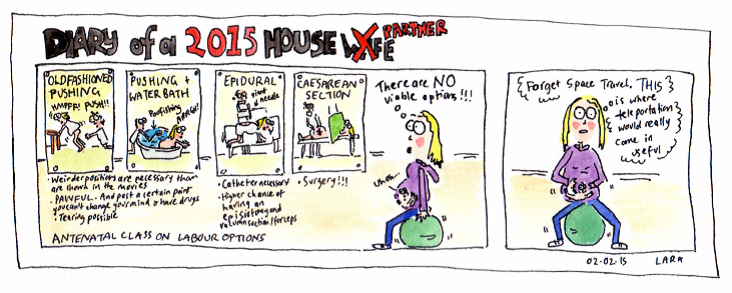 Diary of a Housewife - Labour Options